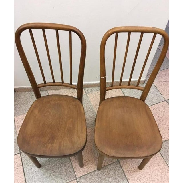 1930s Vintage Model A 63 Chairs by Josef Frank for Thonet - A Pair For Sale - Image 5 of 6