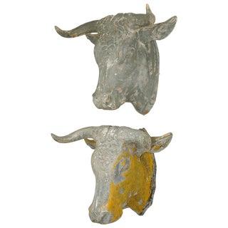 19th Century, French Tetes De Taureau Bull Heads - a Pair For Sale
