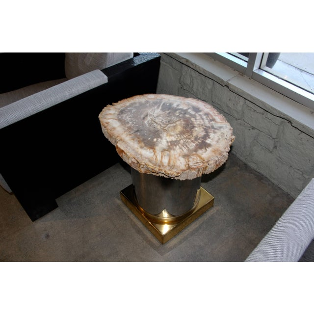 Petrified Wood Table With Brass and Chrome Base For Sale - Image 13 of 13