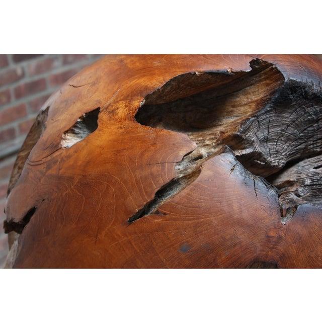 Midcentury Redwood Burl Sphere Sculpture For Sale - Image 12 of 13