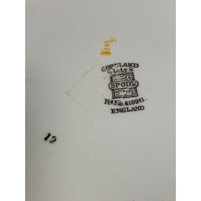Copeland Spode Bird and Border Plates - a Pair For Sale In Dallas - Image 6 of 8