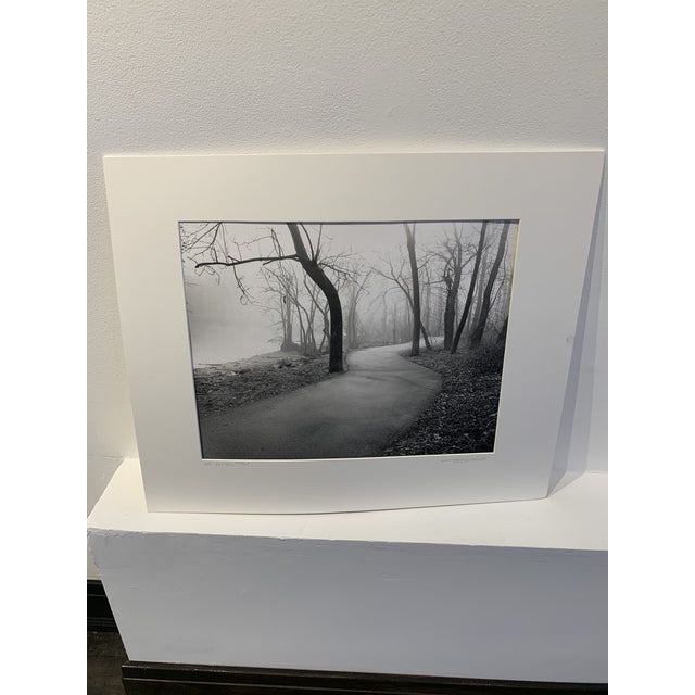 Beautiful photo from DC series by Illinois artist Dede Fuller. The piece depicts a landscape scene.