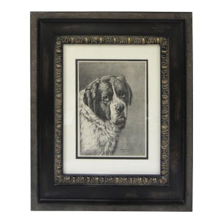 Framed Dog Portrait 2 For Sale