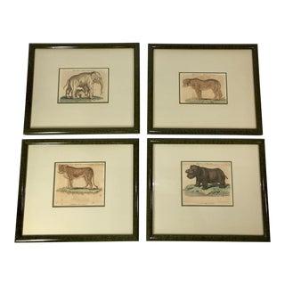 Antique Natural History Framed Prints of Animals - Set of 4 For Sale