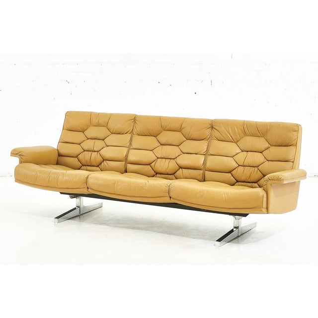 De Sede Leather Ds-P Sofa by Robert Haussmann, Switzerland, 1970 For Sale - Image 9 of 9