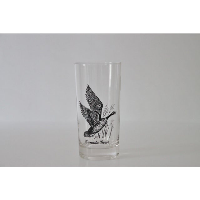 1960s Canada Goose Glasses - Set of 8 For Sale - Image 4 of 5