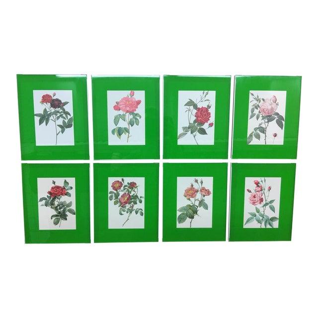 Framed Rose Botanical Prints - Set of 8 - Image 1 of 10
