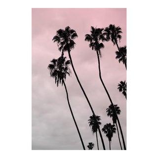 Palm Sky (Pink) Photograph - Coastal Beach Art by Capricorn Press For Sale