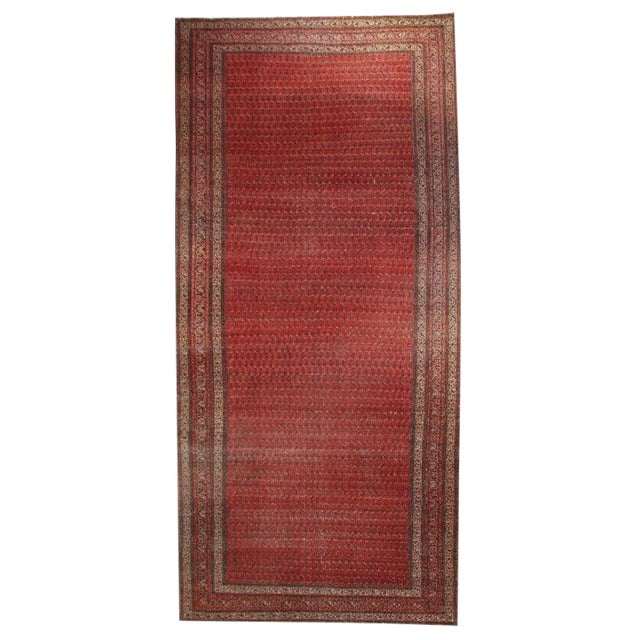 "Antique Seraband Carpet - 6' x 13'2"" For Sale"