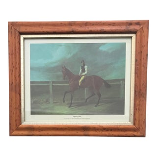 "1960s Framed Equestrian Print by John Frederick Herring, Sr. - ""Matilda"" For Sale"