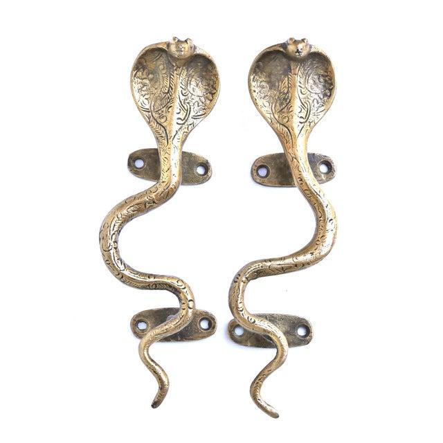 2010s Brass Cobra Door Handles - a Pair For Sale - Image 5 of 5