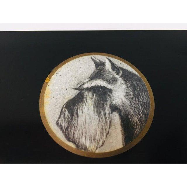 Vintage Bakelite Trinket Hinged Box Couroc of Monterey, Scottish Terrier Inlaid For Sale In Los Angeles - Image 6 of 12