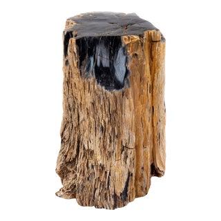 Petrified Wood Log For Sale