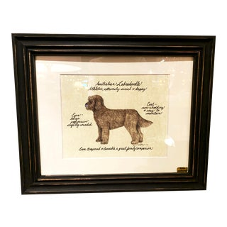 Hand Colored Framed Print of an Australian Labradoodle For Sale