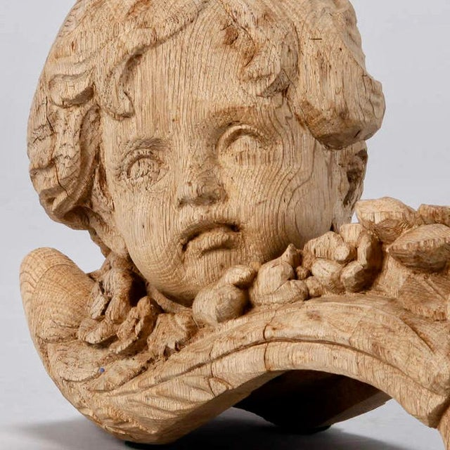 19th Century Bleached Oak Carved Cherubs - A Pair For Sale - Image 4 of 9
