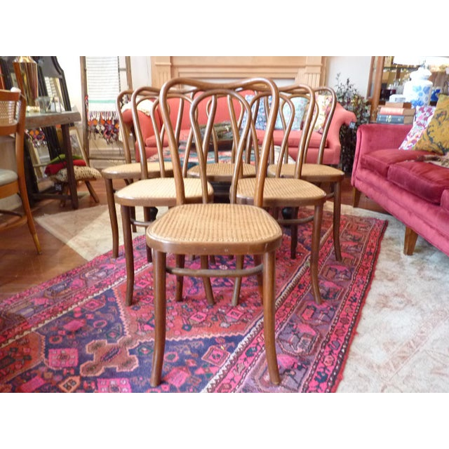 Vintage Bentwood and Cane Cafe Dining Chairs - Set of 6 For Sale - Image 10 of 10