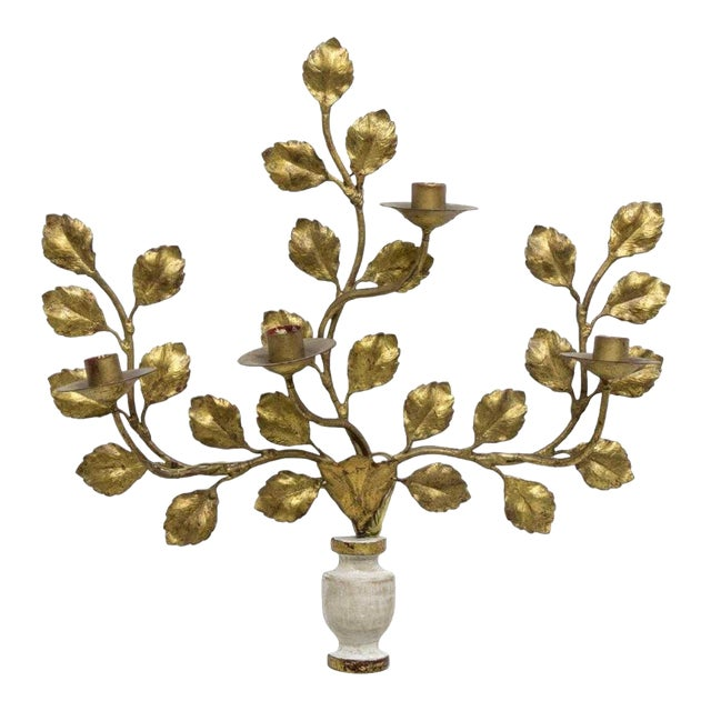 1950s Italian Carved Vasiform & Leafy Branch Wall Sconce For Sale