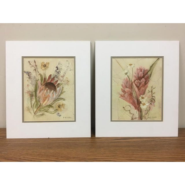 Paper 20th Century Floral Illustration Prints - a Pair For Sale - Image 7 of 7
