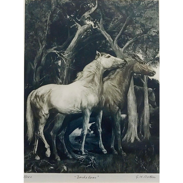 Traditional g.h. Rothe - Pair of Horses in Love - Beautiful Color Mezzotint -Pencil Signed For Sale - Image 3 of 10