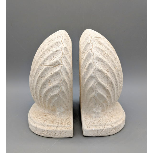 Late 20th Century Off-White Scallop/ Clam Shell Bookends - a Pair For Sale - Image 4 of 9