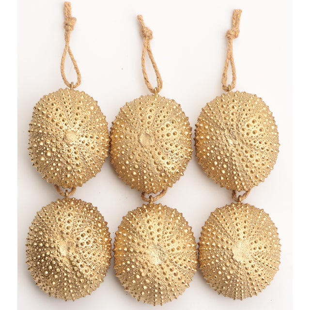 Golden Sea Urchin Ornaments - Set of 6 For Sale In Madison - Image 6 of 6