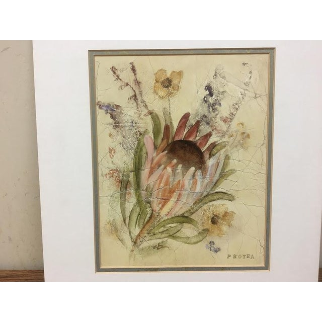 20th Century Floral Illustration Prints - a Pair For Sale - Image 4 of 7
