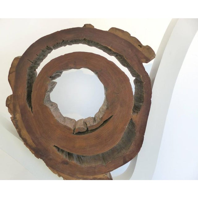 Ipe Reclaimed Wood Mounted Sculpture by Valeria Totti For Sale In Miami - Image 6 of 11