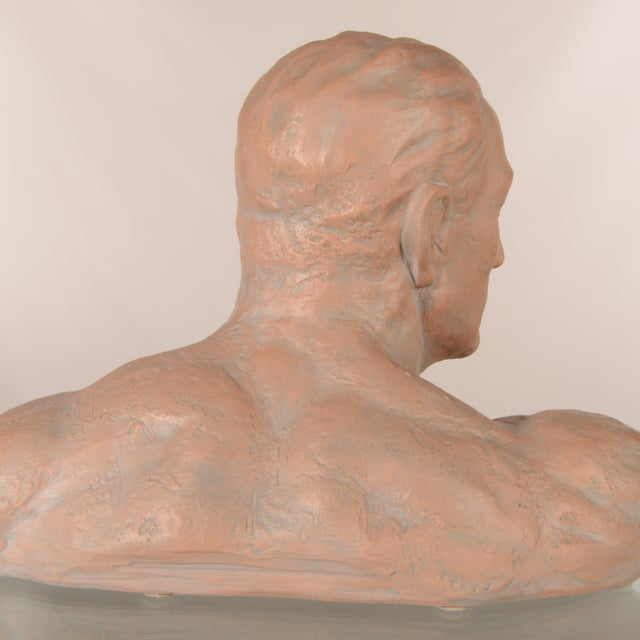 Early 21st Century Italian Terra Cotta Male Bust For Sale - Image 5 of 7