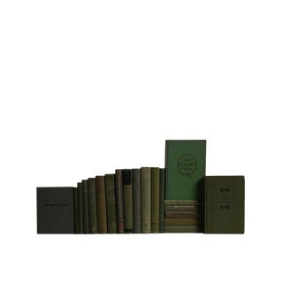 Midcentury Olive - Set of Twenty Decorative Books For Sale