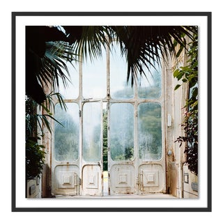 Greenhouse 2 by Annie Spratt, Art Print in Black Frame, Large For Sale