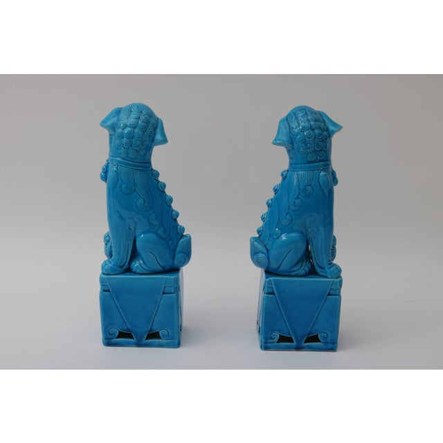 Blue 1920s Chinese, Glazed Peking Blue Foo Dogs - a Pair For Sale - Image 8 of 11