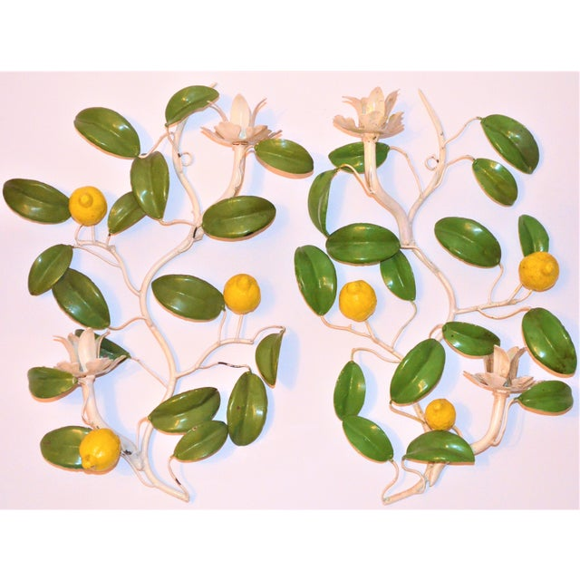 Italian Hand Painted Lemon Tree Tole Wall Sconces - a Pair For Sale - Image 4 of 8