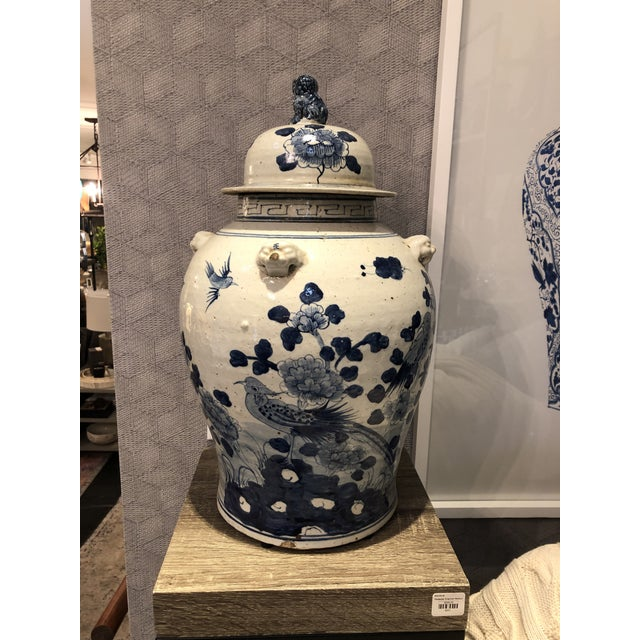 2020s Kenneth Ludwig Chicago Blue & White Bird Ginger Jar For Sale - Image 5 of 7