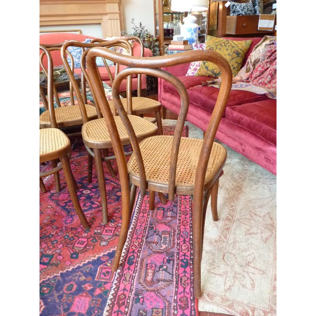 Vintage Bentwood and Cane Cafe Dining Chairs - Set of 6 For Sale In Chicago - Image 6 of 10