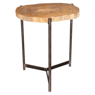 Petrified Wood Top Table with Iron Base