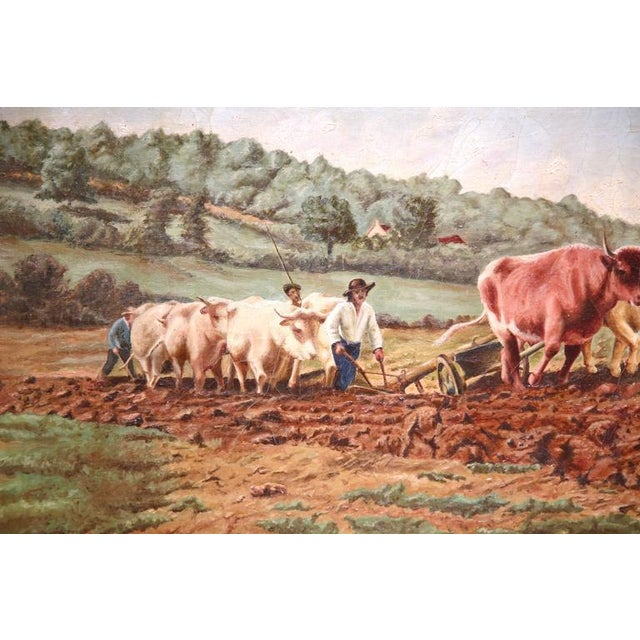 French Early 20th Century French Oil Cows Painting in Carved Arched Gilt Frame For Sale - Image 3 of 10