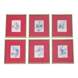 6 Hummingbird Bird Engravings Goldleaf Frames Art Set For Sale