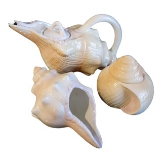 Vintage 3 Piece Ceramic Conch Shell Tea Pot Set Creamer, Sugar Fitz and Floyd Style For Sale