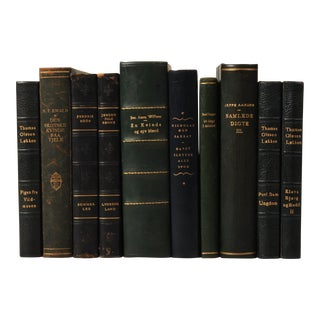 Scandinavian Leather-Bound Books S/10