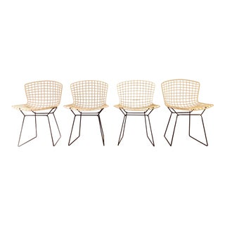 Harry Bertoia for Knoll Associates Side Chairs - Set of 4/6/8 For Sale