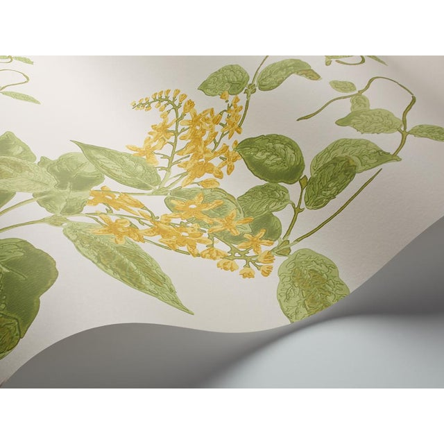 A treasured member of the Cole & Son floral family is recreated here as a stunning surface print wallpaper in several of...