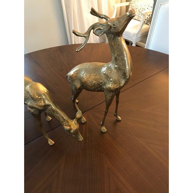 Vintage Brass Deer Figurines - A Pair - Image 3 of 6