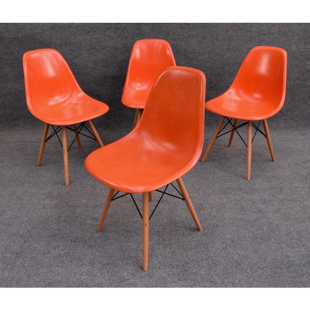 Here is a set of four of the iconic fiberglass chairs designed by Charles Eames in 1948 for the International Competition...