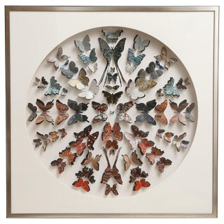 Collection of Antique Marbled End Paper Butterflies