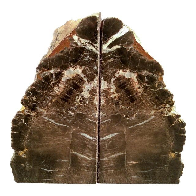 Petrified Wood Bookends - A Pair - Image 1 of 7