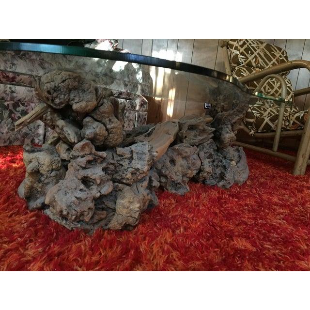 Mid-Century Vintage Driftwood Coffee Table - Image 4 of 4