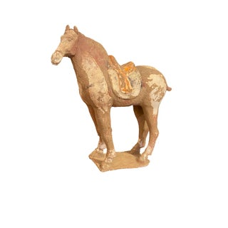 Chinese Tang Dynasty Horse For Sale