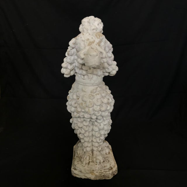 1920s Dog Lovers' Life Sized Stone French Poodle Sculpture Statue For Sale - Image 13 of 13