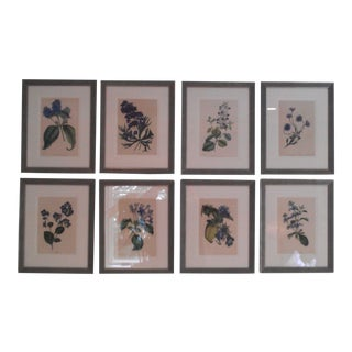 Late 19th Century Antique Botanicals Series - Set of 8 For Sale