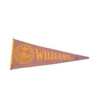 Vintage Williams College Felt Flag